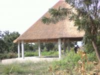 WAARI pagoda